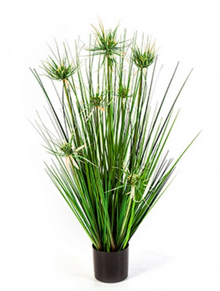Onion star grass - Kunstgras 80 cm
