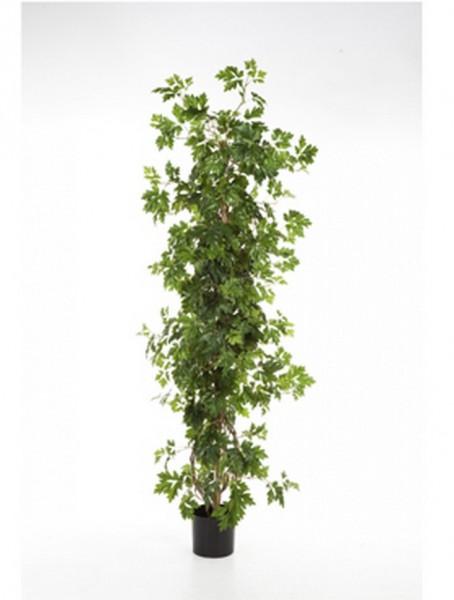 Cissus Säule - Kunstbusch 100 cm