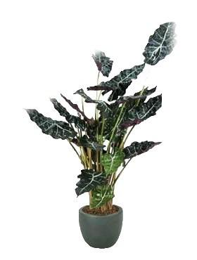 Alocasia Polly 110 cm | Kunstpflanze im Kunstsofftopf