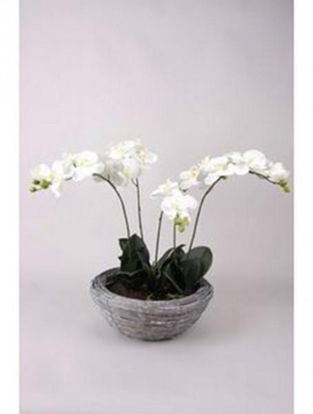 Phalaenopsis weiß 34 cm | Orchideen Kunstpflanze im Korb