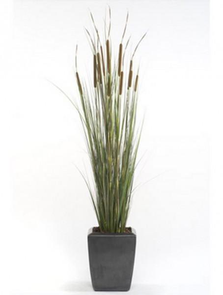 Cattail Gras 120 cm  | Rote Borstenhirse Kunstgras im Plastiktopf