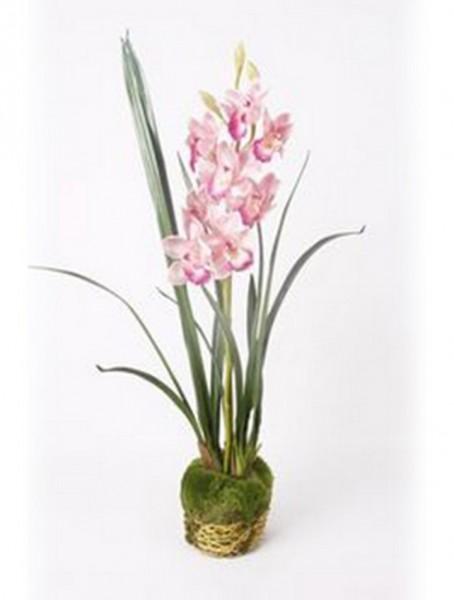 Cymbidium pink 95 cm | Orchideen Kunstpflanze mit Moos