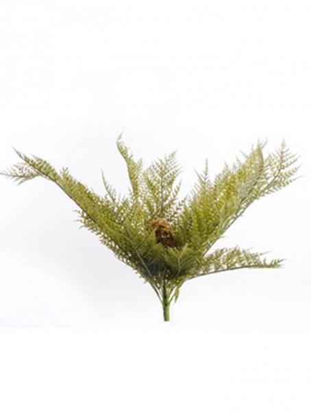 Forest fern 50 cm