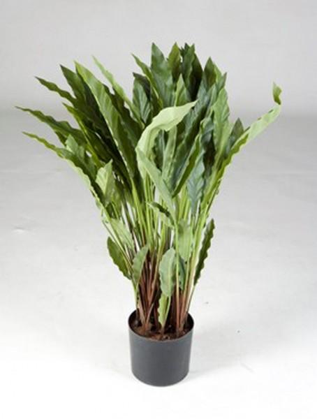 Calathea 70 cm | Kunstpflanze im Topf